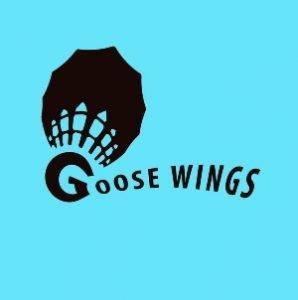 club bádminton goose wings guadalajara