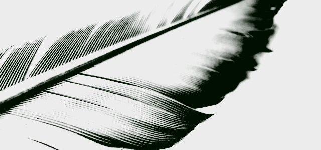 aprende bien a redactar sobre bádminton explicado en power bádminton
